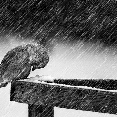 Έκτακτο δελτίο ΕΜΥ: Ο καιρός τρελάθηκε – Έρχονται ισχυρές βροχές και καταιγίδες