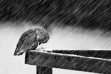 Καιρός: Βροχές και καταιγίδες σήμερα – Ποιες περιοχές θα «χτυπήσει» η κακοκαιρία