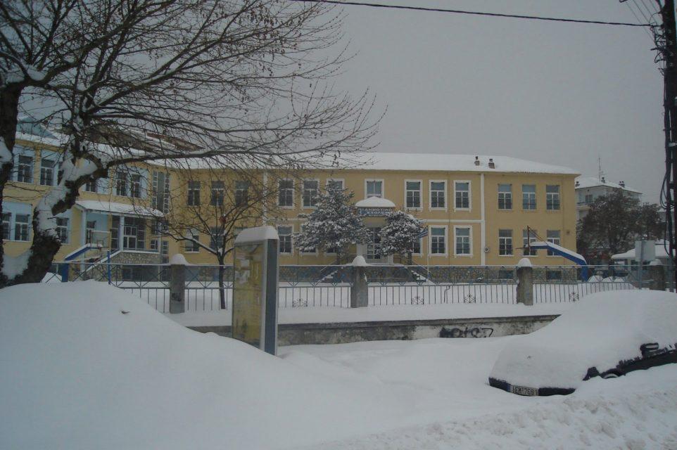 Αποτέλεσμα εικόνας για δειτε πως θα λειτουρησουν τα σχολεια χιονια