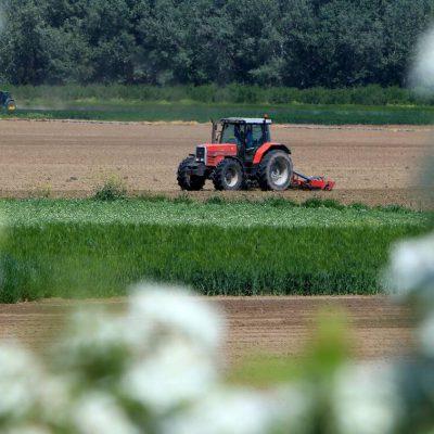 Greekfarms.gov.gr: Η νέα πλατφόρμα για τους αγρότες
