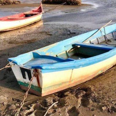 Γιατί «υποχώρησε» η θάλασσα στην Ελλάδα: Προσεισμικό φαινόμενο ή όχι;