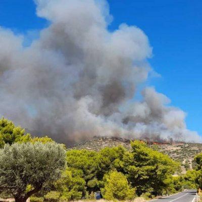 Φωτιά ΤΩΡΑ LIVE: Δείτε πού έχει ξεσπάσει πυρκαγιά – Ζωντανή ενημέρωση